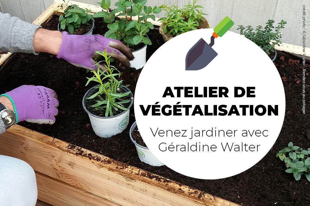 Atelier de végétalisation, venez nombreux